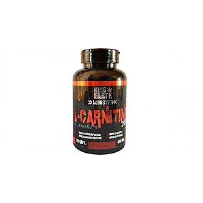 L CARNITINE 2000 120 CAPS 500 MG REI TERRA