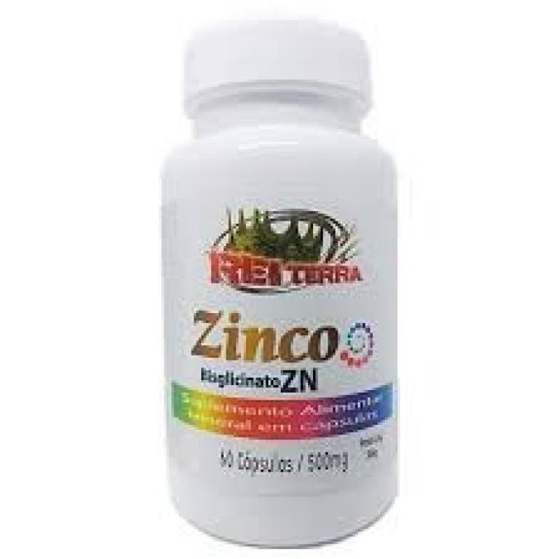 ZINCO BISGLICINATO ZN - 60 CAPS - 500MG - REI TERR...